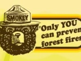 Only you can prevent forest fires or why I shouldn't play with matches.