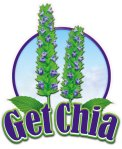 get chia logo