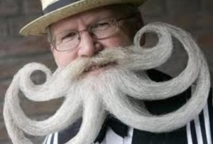 I wish I could grow such an amazing wisdom beard.