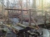 Weekend Hike at AshbyHollow