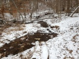 Winter Hike at Bull Run